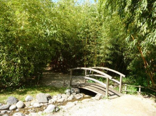 les jardins aquatiques