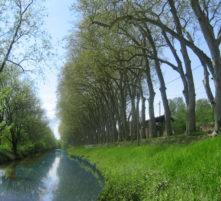 canal de thoissey