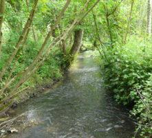 rivière la calonne